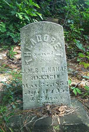 NAHAR, THEODORE T. - Columbiana County, Ohio | THEODORE T. NAHAR - Ohio Gravestone Photos