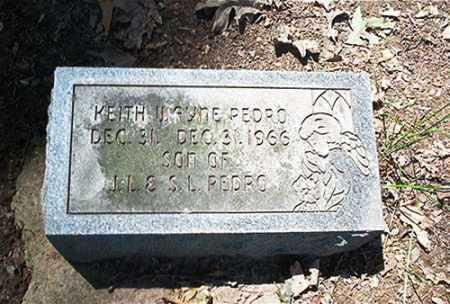 PEDRO, KEITH WAYNE - Columbiana County, Ohio | KEITH WAYNE PEDRO - Ohio Gravestone Photos