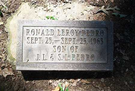 PEDRO, RONALD LEROY - Columbiana County, Ohio   RONALD LEROY PEDRO - Ohio Gravestone Photos