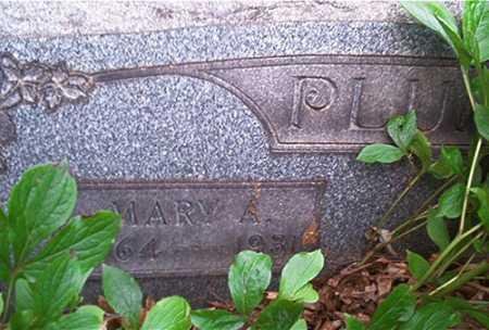 WEST PLUM, MARY A. - Columbiana County, Ohio | MARY A. WEST PLUM - Ohio Gravestone Photos