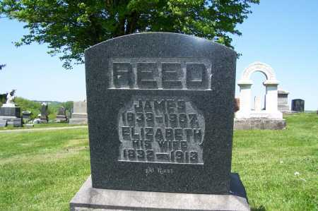 NEWCOMER REED, ELIZABETH - Columbiana County, Ohio | ELIZABETH NEWCOMER REED - Ohio Gravestone Photos