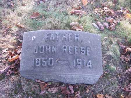 REESE, JOHN - Columbiana County, Ohio | JOHN REESE - Ohio Gravestone Photos