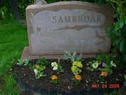 SAMBROAK, RICHARD P. - Columbiana County, Ohio | RICHARD P. SAMBROAK - Ohio Gravestone Photos