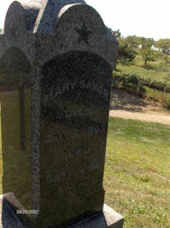 HAMMAN SANOR, MARY - Columbiana County, Ohio | MARY HAMMAN SANOR - Ohio Gravestone Photos