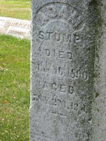 STUMP, ADAM NOT CHALKED - Columbiana County, Ohio | ADAM NOT CHALKED STUMP - Ohio Gravestone Photos