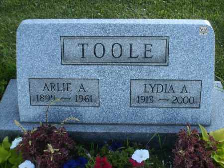 TOOLE, LYDIA ALMIRA - Columbiana County, Ohio | LYDIA ALMIRA TOOLE - Ohio Gravestone Photos