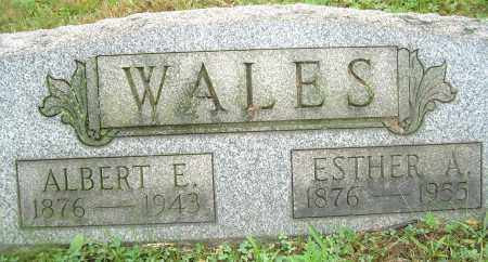 WALES, ALBERT E - Columbiana County, Ohio | ALBERT E WALES - Ohio Gravestone Photos