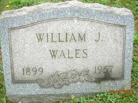 WALES, WILLIAM J - Columbiana County, Ohio | WILLIAM J WALES - Ohio Gravestone Photos