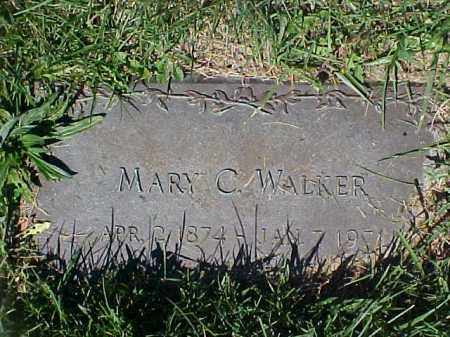 HAYES WALKER, MARY C - Columbiana County, Ohio | MARY C HAYES WALKER - Ohio Gravestone Photos