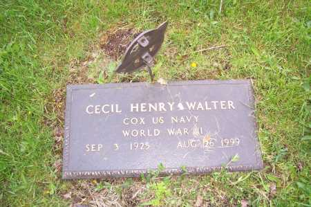 WALTER, CECIL - Columbiana County, Ohio | CECIL WALTER - Ohio Gravestone Photos