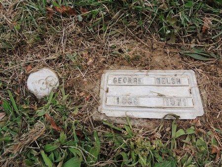 WELSH, GEORGE - Columbiana County, Ohio | GEORGE WELSH - Ohio Gravestone Photos