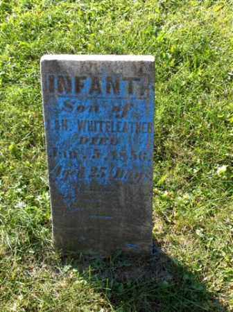 WHITELEATHER, INFANT - Columbiana County, Ohio | INFANT WHITELEATHER - Ohio Gravestone Photos