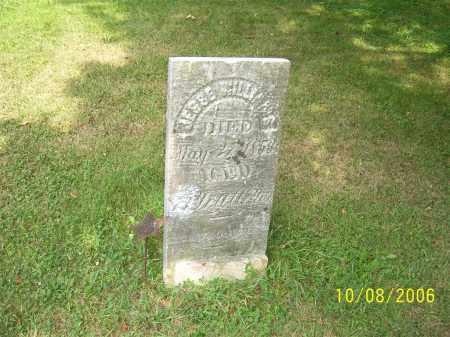 WILLIAMS, JESSE - Columbiana County, Ohio | JESSE WILLIAMS - Ohio Gravestone Photos