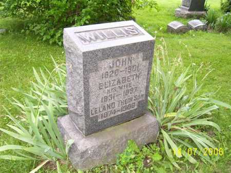 WILLIS, JOHN - Columbiana County, Ohio | JOHN WILLIS - Ohio Gravestone Photos