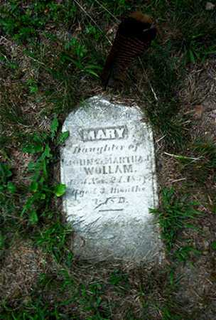WOLLAM, MARY - Columbiana County, Ohio | MARY WOLLAM - Ohio Gravestone Photos