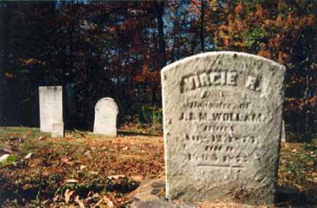 WOLLAM, VIRGIE R. - Columbiana County, Ohio | VIRGIE R. WOLLAM - Ohio Gravestone Photos