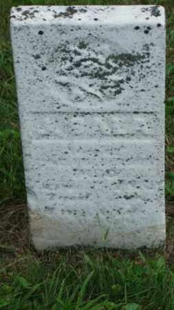 ?, ASALA - Coshocton County, Ohio | ASALA ? - Ohio Gravestone Photos