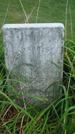 BARKEY, ELISABETH - Coshocton County, Ohio | ELISABETH BARKEY - Ohio Gravestone Photos