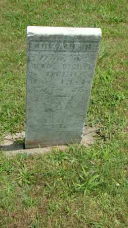 BICKEL, ELIZABETH - Coshocton County, Ohio | ELIZABETH BICKEL - Ohio Gravestone Photos