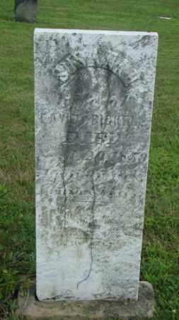 BICKEL, SUSANNAH - Coshocton County, Ohio | SUSANNAH BICKEL - Ohio Gravestone Photos
