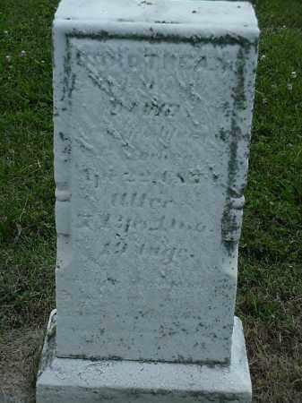 M LAUTENSCHLAGER, DOROTHEA - Coshocton County, Ohio | DOROTHEA M LAUTENSCHLAGER - Ohio Gravestone Photos