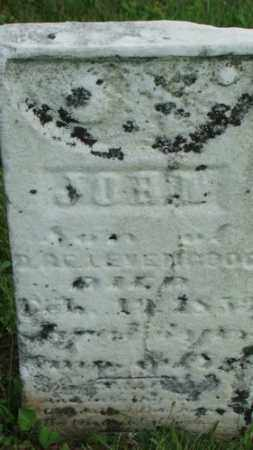 LEVENGOOD, JOHN - Coshocton County, Ohio | JOHN LEVENGOOD - Ohio Gravestone Photos