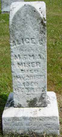 MISER, ALICE C. - Coshocton County, Ohio | ALICE C. MISER - Ohio Gravestone Photos