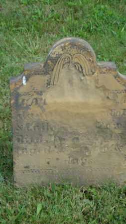 ROW, CATHERINE A. - Coshocton County, Ohio | CATHERINE A. ROW - Ohio Gravestone Photos