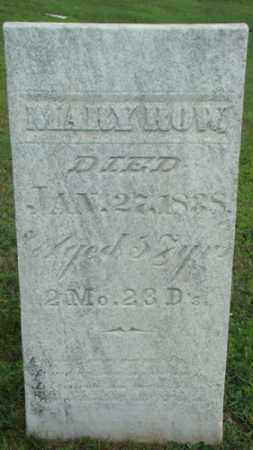 ROW, MARY - Coshocton County, Ohio | MARY ROW - Ohio Gravestone Photos