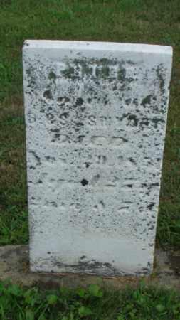 SNYDER, PETER - Coshocton County, Ohio | PETER SNYDER - Ohio Gravestone Photos