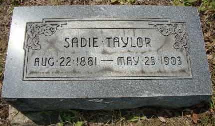TAYLOR, SADIE - Coshocton County, Ohio | SADIE TAYLOR - Ohio Gravestone Photos