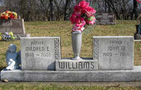 WILLIAMS, MILDRED E - Coshocton County, Ohio | MILDRED E WILLIAMS - Ohio Gravestone Photos