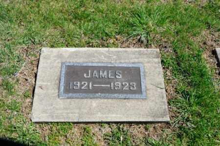 WILLIAMSON, JAMES DENVER - Coshocton County, Ohio   JAMES DENVER WILLIAMSON - Ohio Gravestone Photos