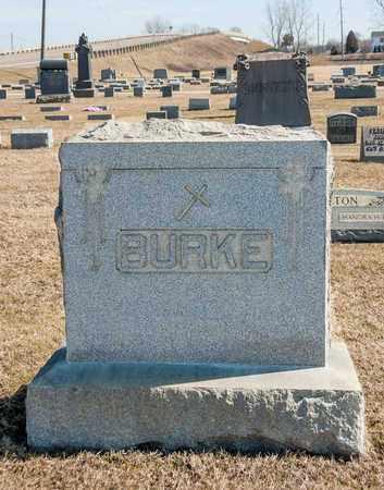 BURKE, DAVID M - Crawford County, Ohio | DAVID M BURKE - Ohio Gravestone Photos