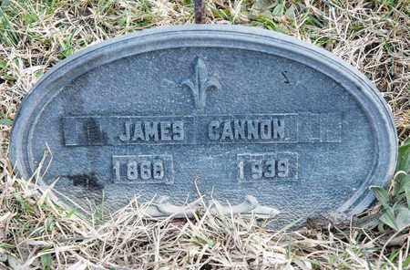 CANNON, JAMES - Crawford County, Ohio | JAMES CANNON - Ohio Gravestone Photos