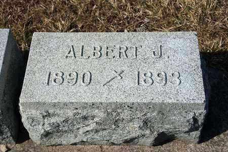 CLEMENS, ALBERT J - Crawford County, Ohio | ALBERT J CLEMENS - Ohio Gravestone Photos
