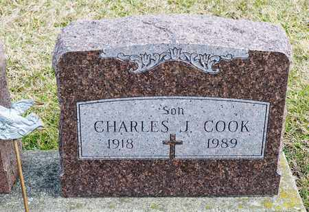 COOK, CHARLES J - Crawford County, Ohio | CHARLES J COOK - Ohio Gravestone Photos
