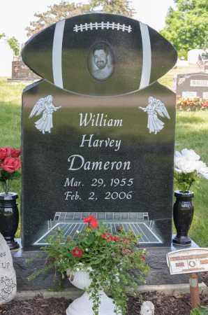 DAMERON, WILLIAM HARVEY - Crawford County, Ohio | WILLIAM HARVEY DAMERON - Ohio Gravestone Photos