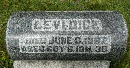 DICE, LEVI - Crawford County, Ohio | LEVI DICE - Ohio Gravestone Photos