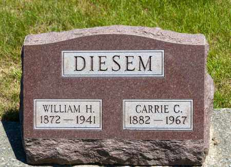 DIESEM, CARRIE C. - Crawford County, Ohio | CARRIE C. DIESEM - Ohio Gravestone Photos