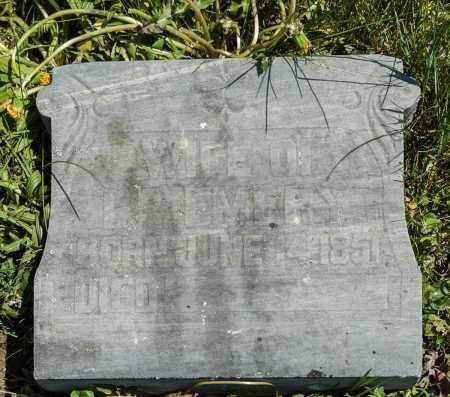 EMERY, MARTHA JANE - Crawford County, Ohio | MARTHA JANE EMERY - Ohio Gravestone Photos