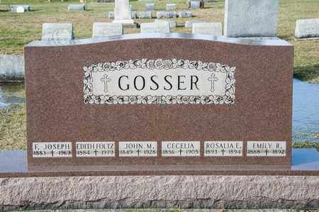 FOLTZ GOSSER, EDITH - Crawford County, Ohio | EDITH FOLTZ GOSSER - Ohio Gravestone Photos