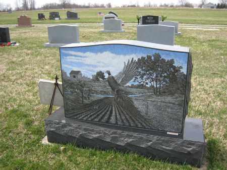 HILDRETH BACK, PAUL - Crawford County, Ohio   PAUL HILDRETH BACK - Ohio Gravestone Photos