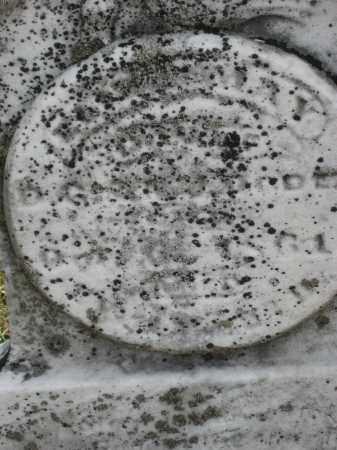 OGDEN, JOHN HENRY - Crawford County, Ohio | JOHN HENRY OGDEN - Ohio Gravestone Photos