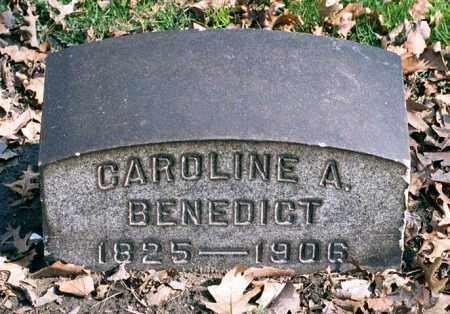 BENEDICT, CAROLINE AMELIA - Cuyahoga County, Ohio | CAROLINE AMELIA BENEDICT - Ohio Gravestone Photos