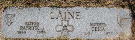 CAINE, CELIA - Cuyahoga County, Ohio | CELIA CAINE - Ohio Gravestone Photos