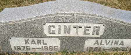 GINTER, ALVINA - Cuyahoga County, Ohio | ALVINA GINTER - Ohio Gravestone Photos