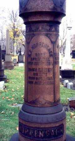 HOPPENSACK, HENRY F. - Cuyahoga County, Ohio | HENRY F. HOPPENSACK - Ohio Gravestone Photos