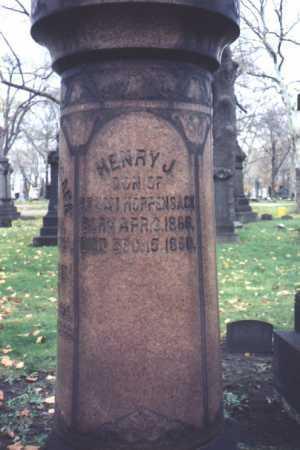 HOPPENSACK, HENRY, J. - Cuyahoga County, Ohio | HENRY, J. HOPPENSACK - Ohio Gravestone Photos