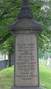 MANNING, WILLIAM JAMES - Cuyahoga County, Ohio | WILLIAM JAMES MANNING - Ohio Gravestone Photos